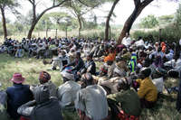 CTR - Promoting Peace and Stability in the Horn of Africa region-SIDA