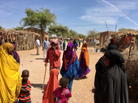 DEC - RESTORE 2 Building Resilience in Northern Somalia